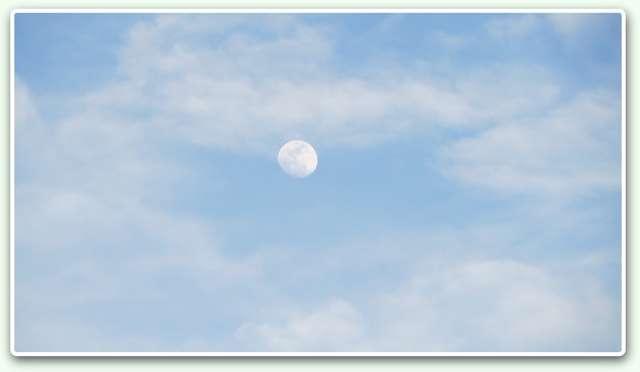 Lluna diürna