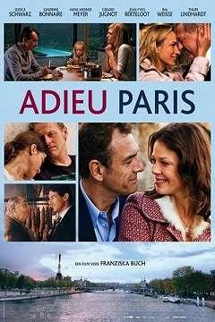 Elveda Paris - 2013 Türkçe Dublaj MKV indir