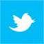 Twitter logo text vector