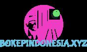 bokepasia