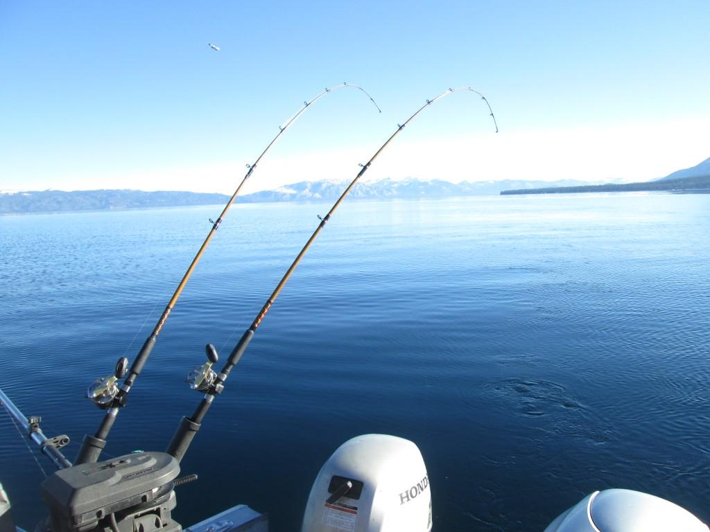 January 5 2017 excellant mackinaw fishing lake tahoe for Lake tahoe fishing charters