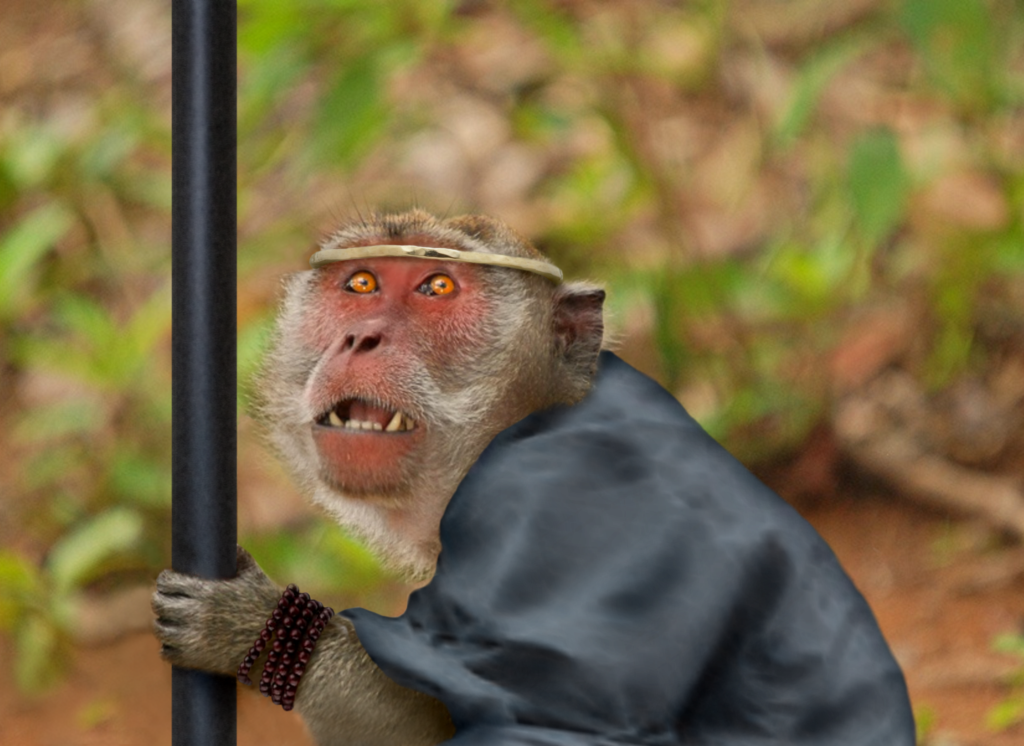 monkey journey to the west essay Okonkwo as a tragic hero print  if you are the original writer of this essay and no longer wish to have the essay published on the uk essays.