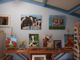 dierenschilderijen opdracht