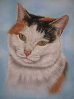 schilderij hond kat paard opdracht