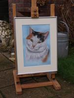 schilderij kat opdracht