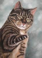 schilderij kat hond opdracht