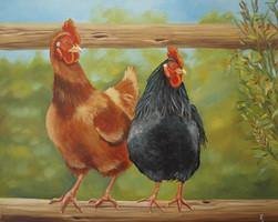 kippenschilderij olieverf
