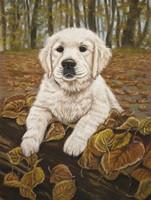 hondenschilderij opdracht schilderij hond