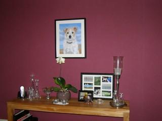 schilderij hond opdracht kat