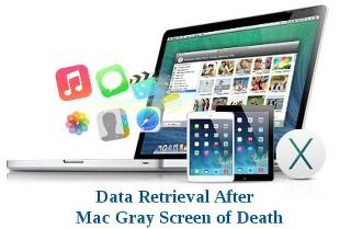 Data Retrieval After Mac Gray Screen of Death