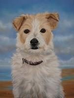 schilderij hond opdracht hondenschilderij