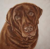 schilderij portret hond opdracht