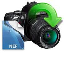 photo recovery for nef files