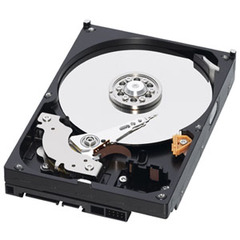 Western Digital Caviar Data Recovery