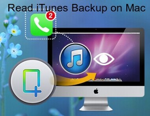 How to Read iTunes Backup on Mac