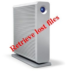 Retrieve lost files from LaCie D2 Quadra