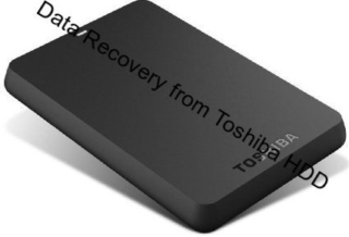 Data Recovery from Toshiba Canvio Basics 500GB External HDD