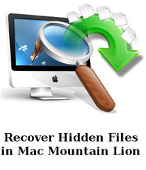 Recover Hidden Files in Mountain Lion