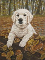 schilderij hond hondenschilderij