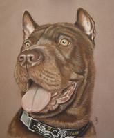 schilderij hond opdracht