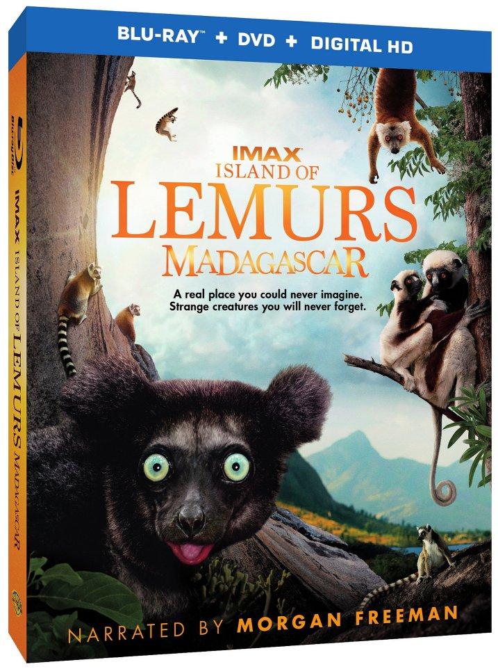 IMAX Island Lemurs Madagascar (2014) mkv 3D Half SBS DTS ITA ENG - DDN