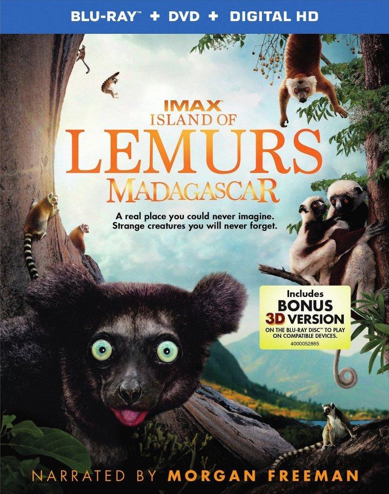 Island of Lemurs: Madagascar (2014) ISO BDRA 3D BluRay AVC DTS ITA DTSHD ENG - DDN