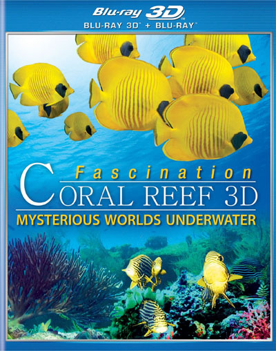 Fascination Coral Reef Mysterious Worlds Underwater (2013) MKV 3D Half SBS DTS ITA ENG + AC3 Sub - DDN