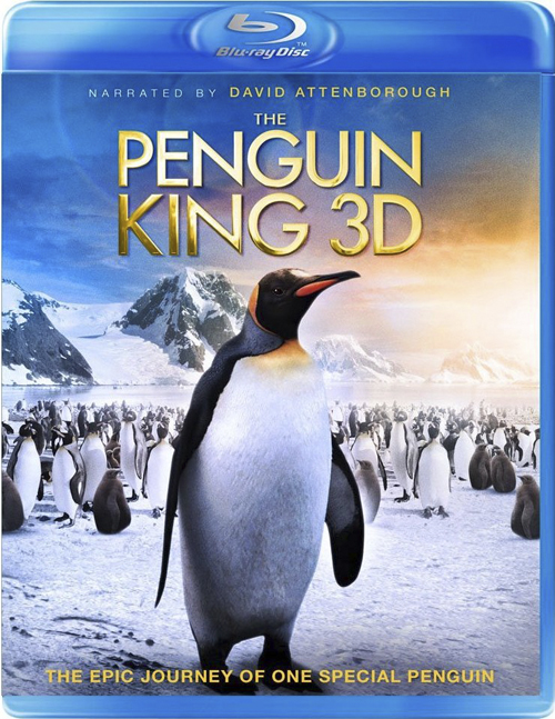 The Penguin King - In marcia per la vita (2011) ISO BDRA 3D 2D BluRay DD ITA DTS-HD ENG - DDN