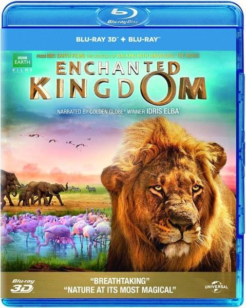 Enchanted Kingdom 3D (2014) MKV 3D Half-SBS 1080p DTS ITA ENG - DDN