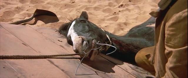 751Wgv Richard Brooks   Bite the Bullet (1975)