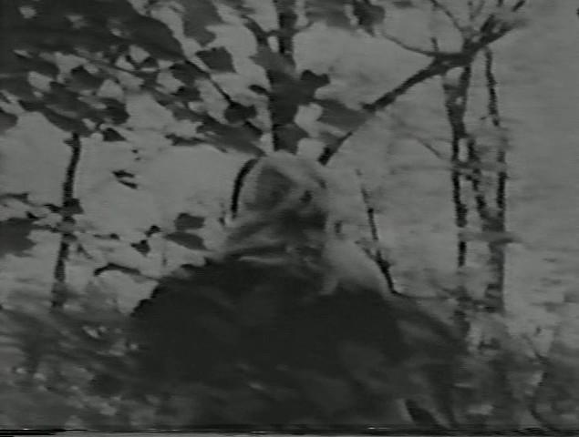 5uqb Eberhardt Kronhausen & Phyllis Kronhausen   Psychomontage No. 1 (1963)