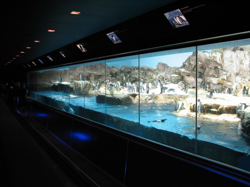 Aquariums And Zoos A Photo Thread Page 6