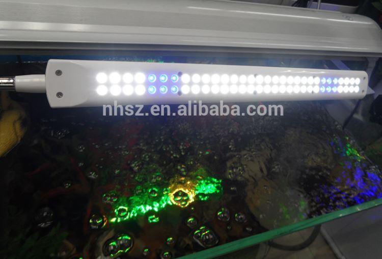 Lampada plafoniera 62 led luce acquario bordo vasca for Lampada acquario