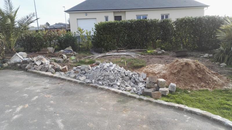 LE FORUM DES FOUS DE PALMIERS • (76) Mon jardin littoral le Havre ...