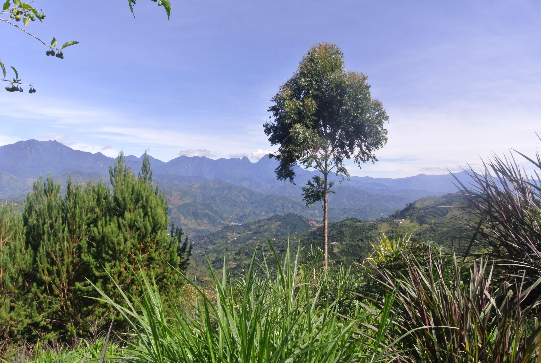 La vista del paisaje cerca de Jardín, Antioquia, Colombia