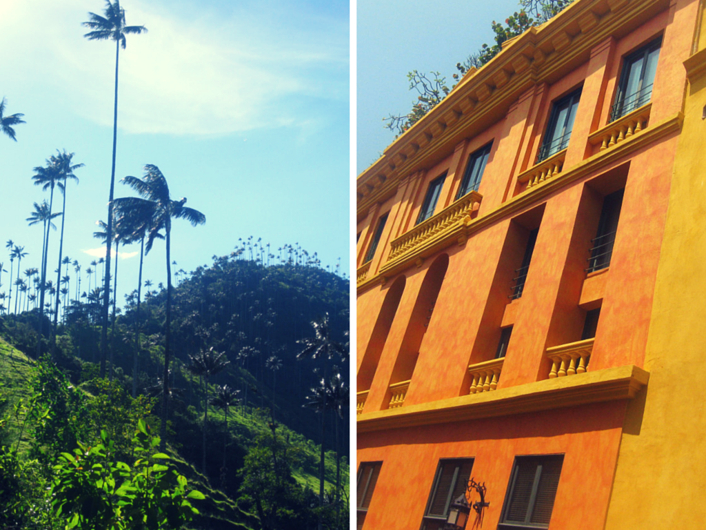 Valle de Cocora and Cartagena Old Town, Colombia | Todd's Travels Travel Blog