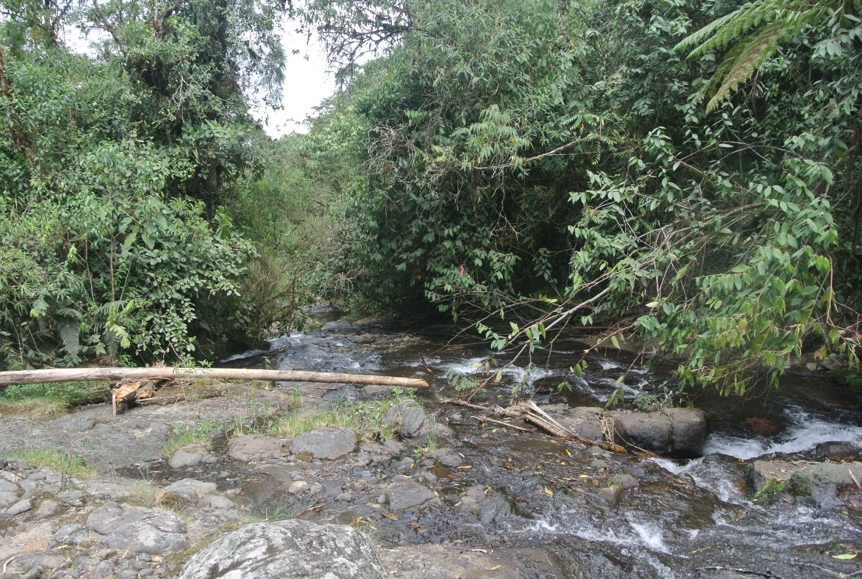 El rio que va para la cueva del esplendor, Jardín, antioquia, Colombia