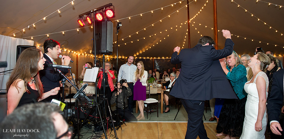 Grizzly Bear lead singer Ed Droste performs at his brothers wedding
