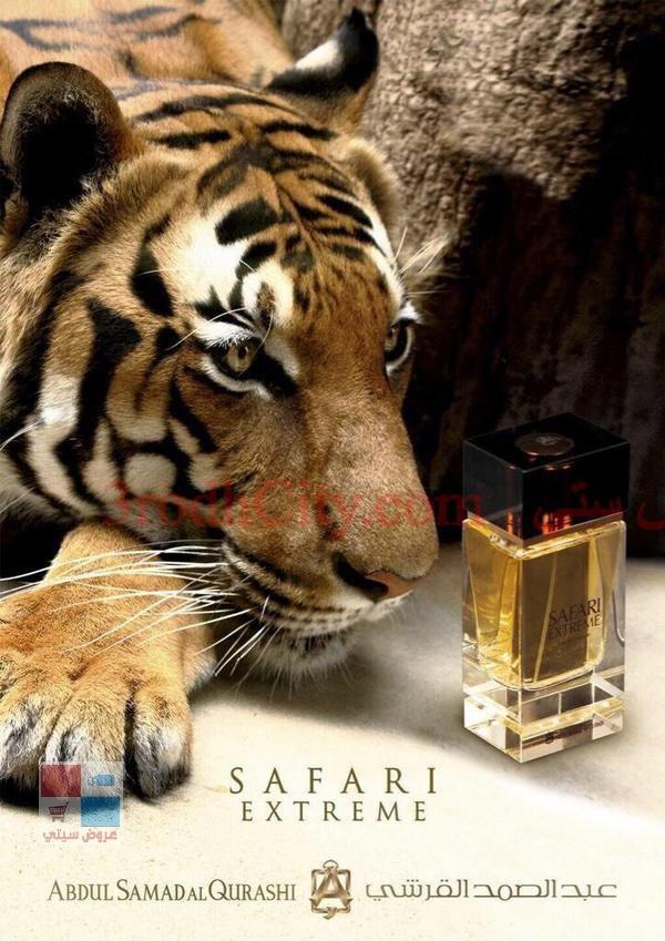 عطر سفاري القرشي safari pO4Trg.jpg