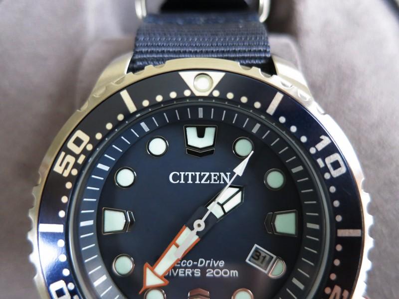 citizen diver promaster