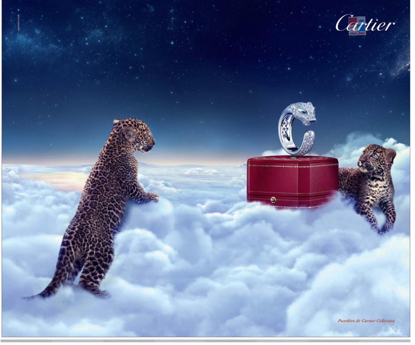مجوهرات كارتير Cartier uB9KoK.jpg