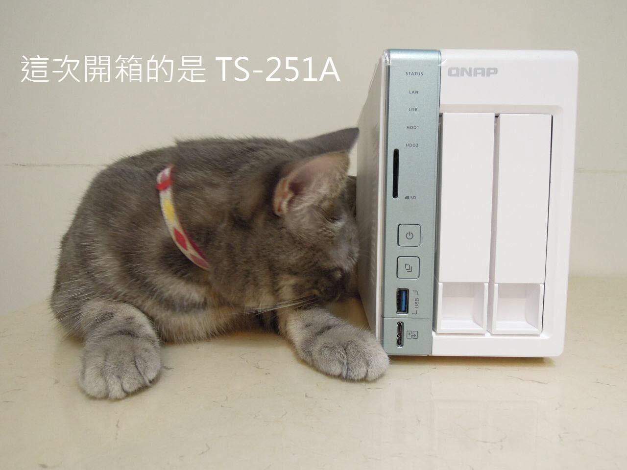 电脑桌面动物壁纸1280 960