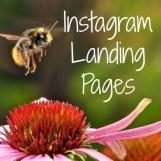 Landing Page Instagram