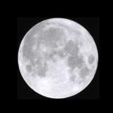 Lunar Delight