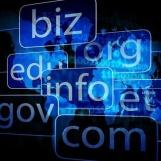 Domain Checker