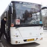 Bus 316 Bot