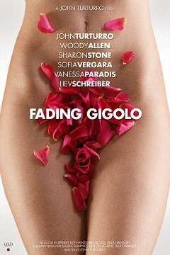 Kiralık Aşık - Fading Gigolo - 2013 Türkçe Dublaj MKV indir