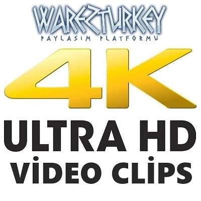 4K UHD 2160p Music Clips Teklink indir