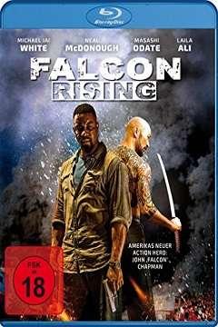 Falcon Rising - 2014 BluRay 1080p x264 DTS MKV indir
