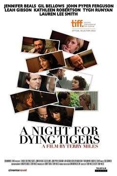 Çöküşün Başlangıcı – A Night for Dying Tigers - 2010 Türkçe Dublaj MKV indir